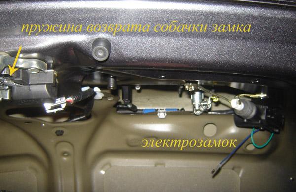 Схема расположения ремня генератора фото 392
